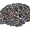 楽器のすゝめ! 脳が活性化して、あれこれいいことずくめらしいよっ
