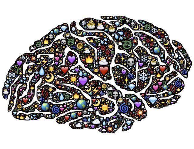 brain-954815_640