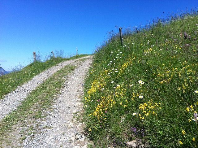 mountain-path-953843_640-compressor