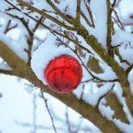 バスティン4「冬の讃歌」練習